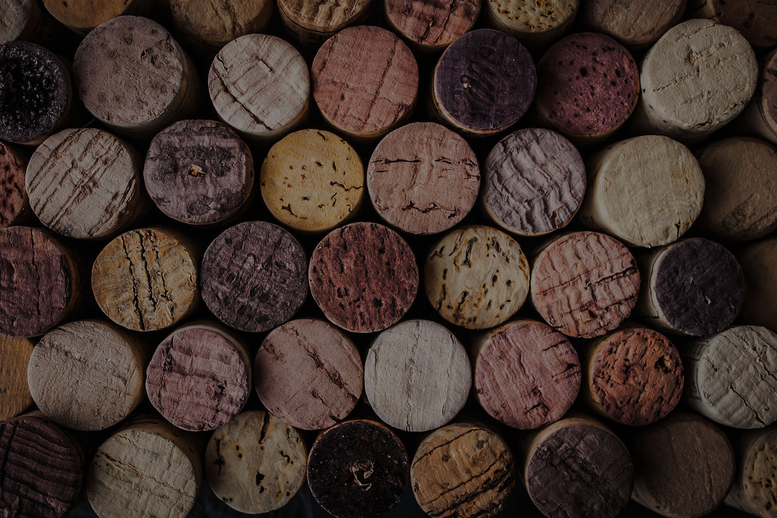Cork And Barrel Wine Tours